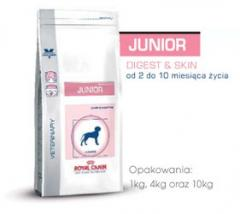 Junior digest & skin 29